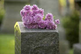 Cover Photo: How to Clean a Cemetery Headstone