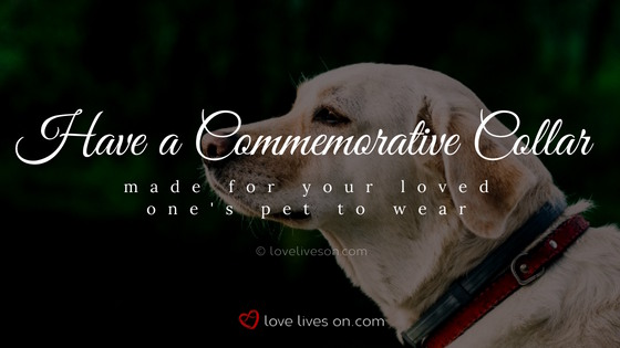 Celebration of Life Ideas: Make a Commemorative Pet Collar