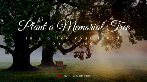 60 Best Celebration Of Life Ideas Love Lives On Delectable In Memoriam Of A Loved One