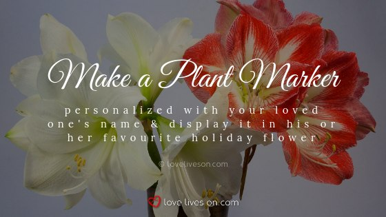 Remembering Loved Ones at Christmas With a Favourite Flower