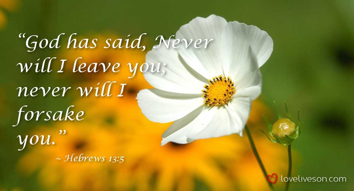 100+ Bible Verses For Funerals | Find the Perfect Scripture | Love